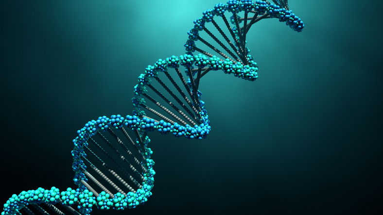 The extended selfish gene – Richard Dawkins (Summary)